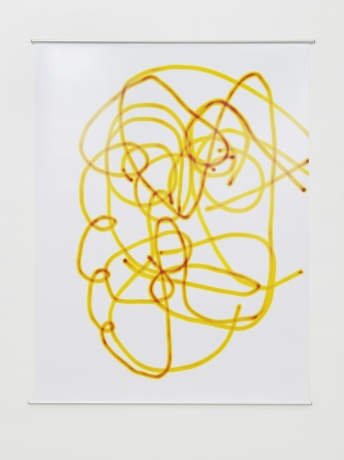 UNTITLED 2000 (C. Wool), 2015  |yellow, Luminogramm, analoger C-Print, 168 x 127 cm